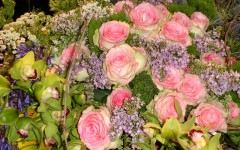 Flower Shows: Philadelphia: Rose Bouquet